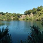 Carpquarry Carp Lake